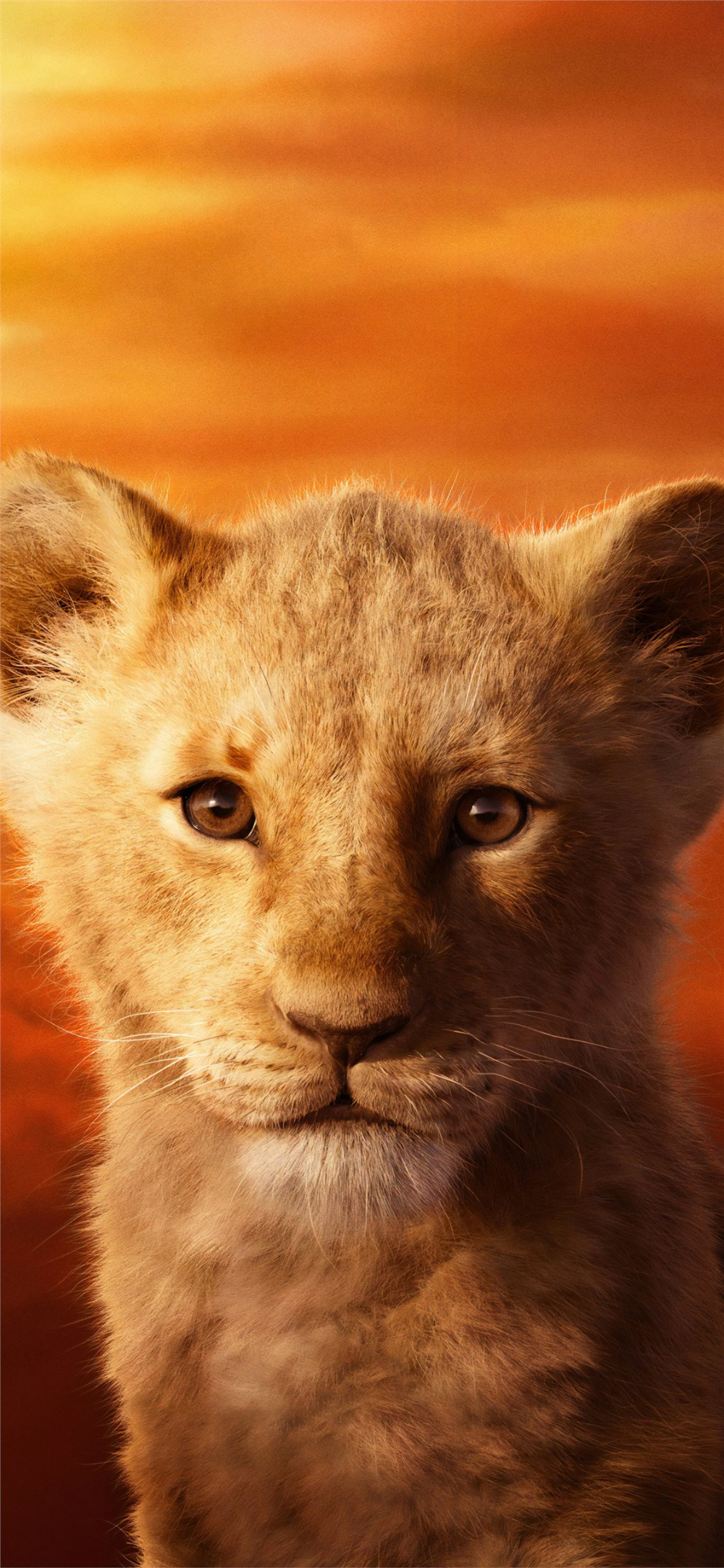 Free Download The Jd Mccrary As Simba The Lion King 2019 4k Wallpaper Beaty Your Iphone Movies Lion Lion King Pictures Lion King Poster Disney Lion King