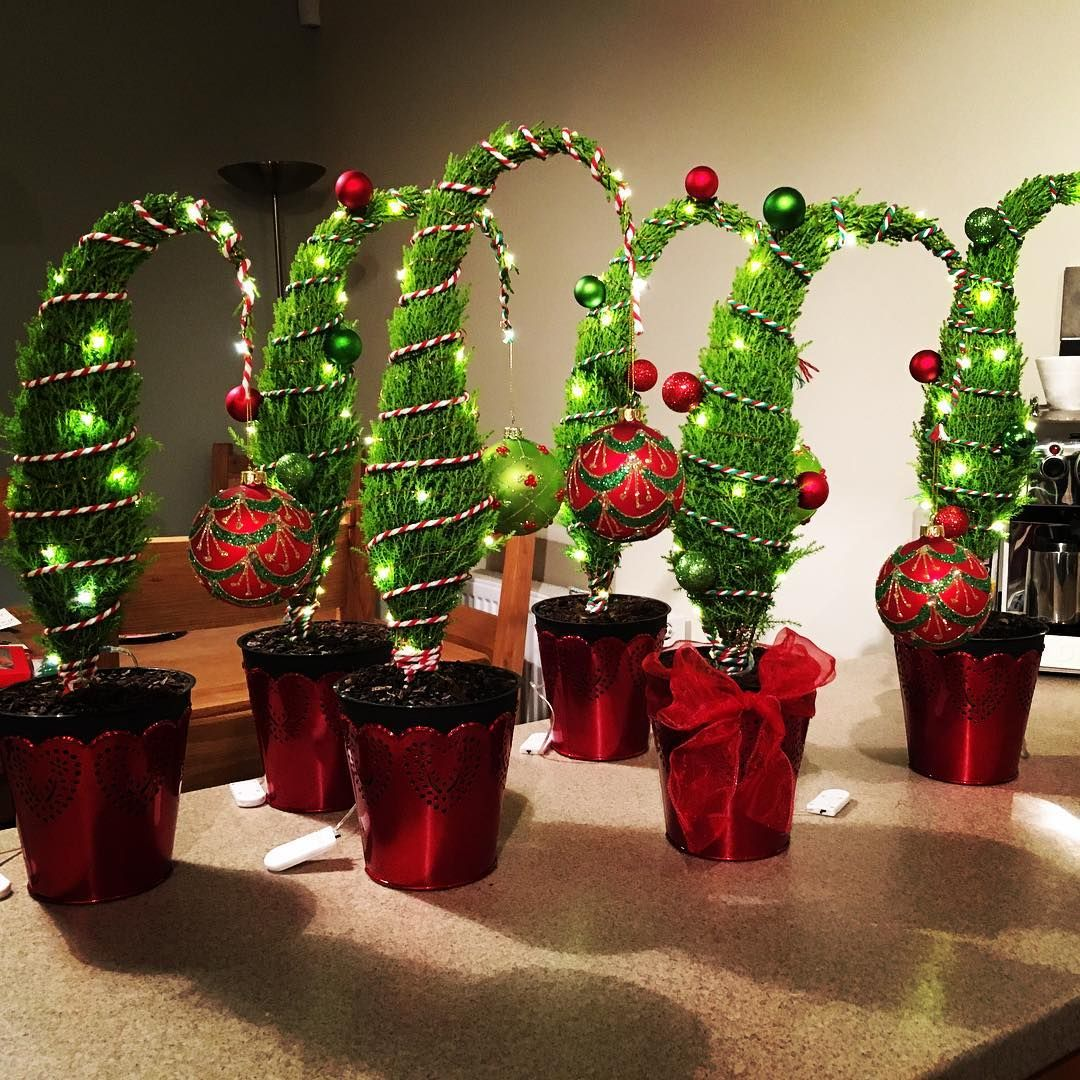 A flock of little Grinch trees about to be delivered to their new ...