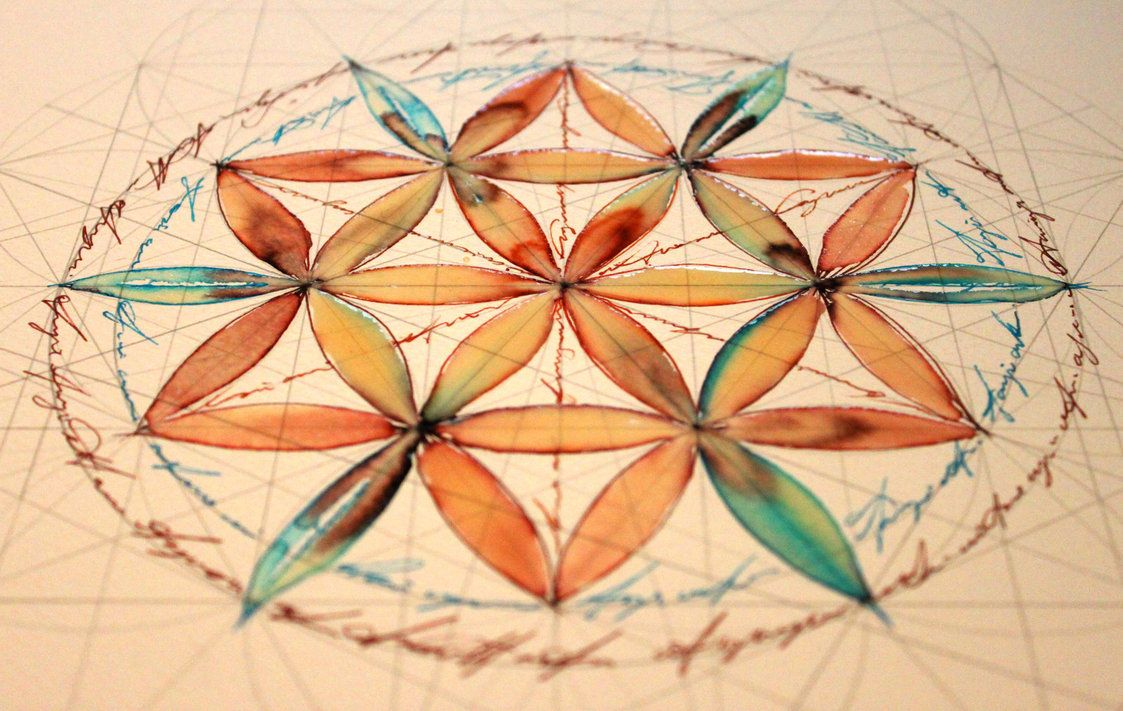 Flower of life - study 1 by *Carnegriff on deviantART