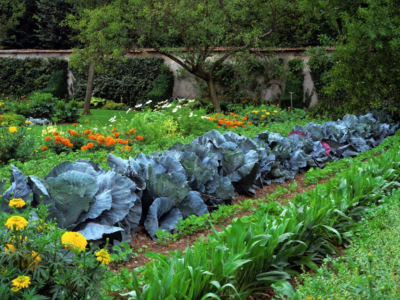 Beau Ready, Set, Grow! When To Start Your Garden. Vegetable Garden DesignFlower  ...