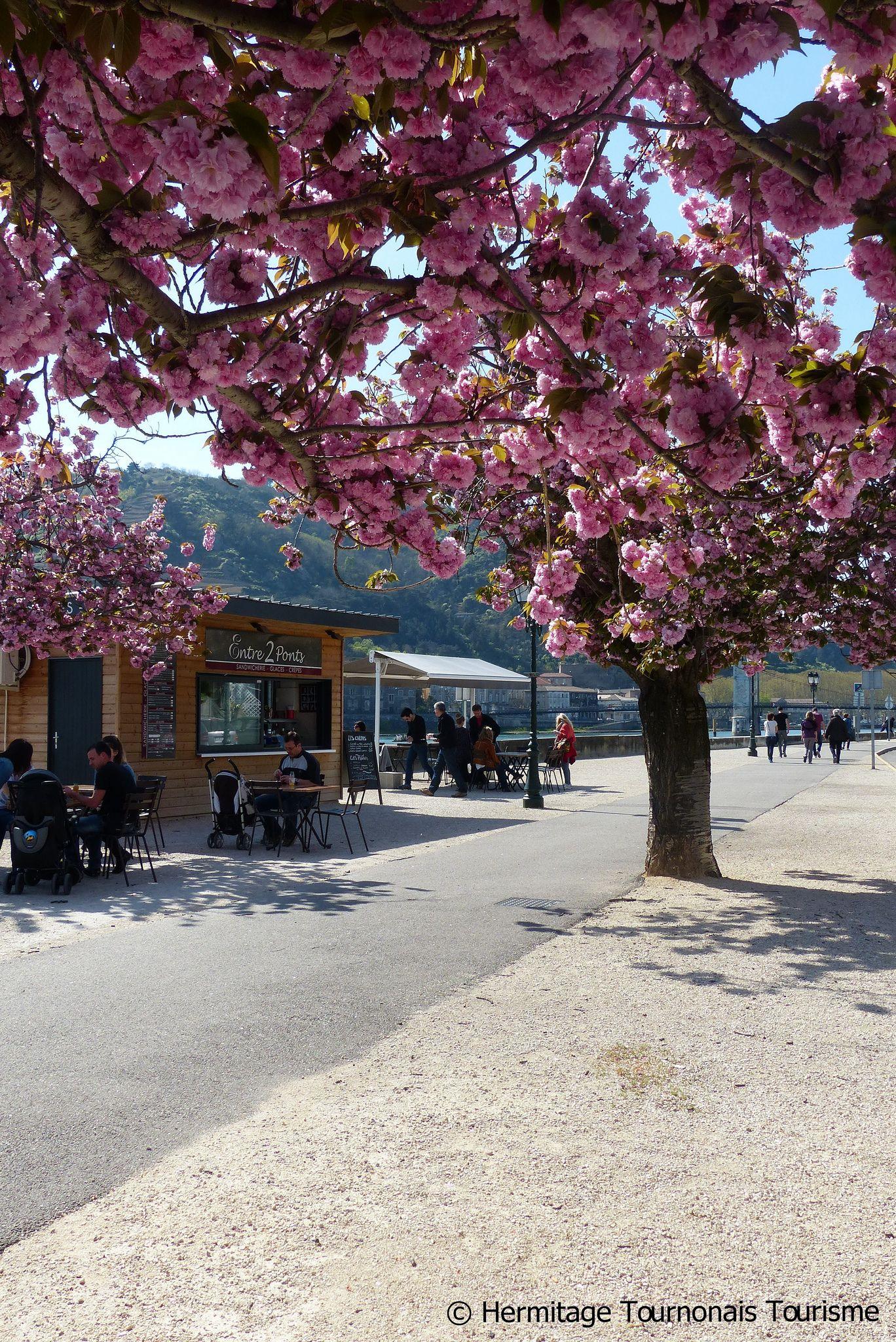 la ViaRhôna à Tain l'Hermitage Tourisme, Balade, Ardèche