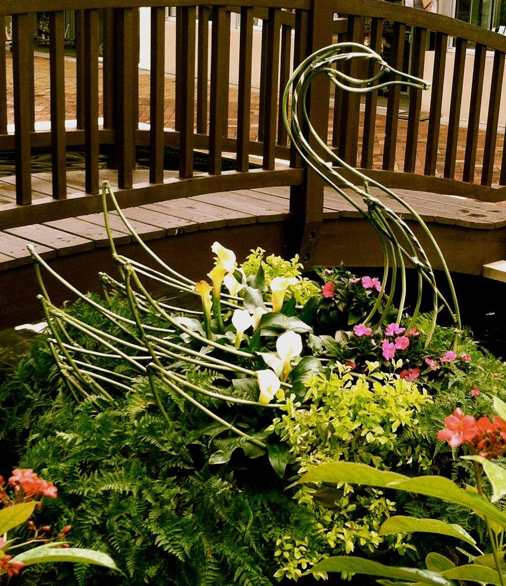 Topiary Sculpture Art by Topiary Joe - Topiary Joe\'s Living Logos ...