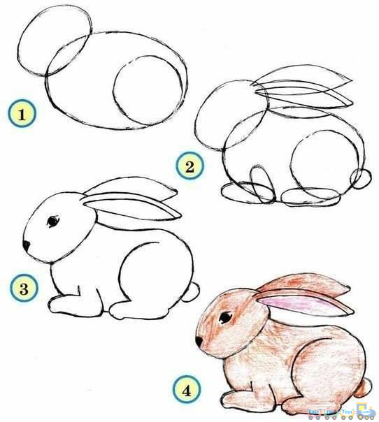 Drawing simple animal rabbit pics simple painting and drawing proste malowanie i rysowanie - Animaux facile a dessiner ...