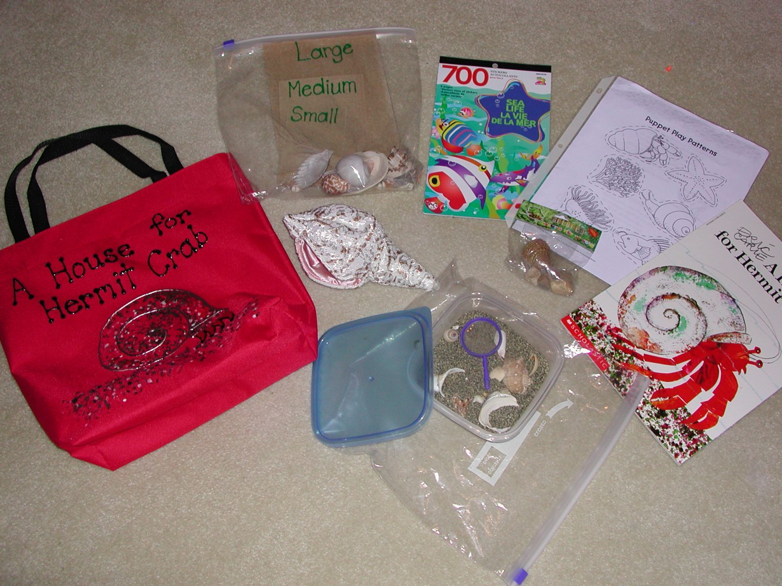 A House For Hermit Crab Literacy Bag