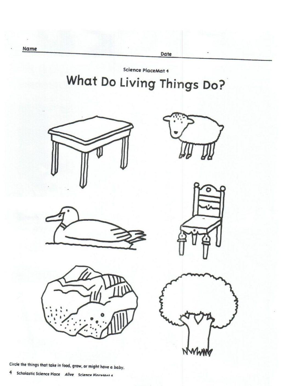 Living And Nonliving Worksheets For Kindergarten