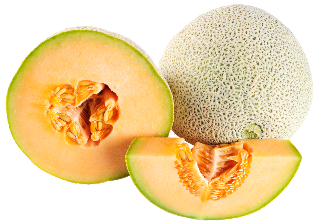 Ripe Cantaloupe Melon Png Image Cantaloupe And Melon Cantaloupe Melon Ontdek de perfecte cantaloupe stockillustraties van getty images. ripe cantaloupe melon png image
