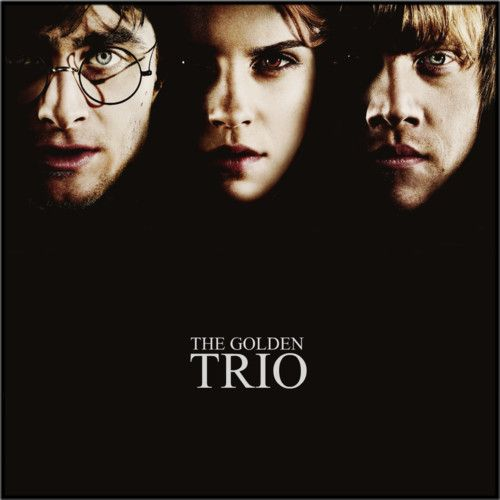 The Golden Trio Harry Potter Harry Potter Quotes Harry James Potter