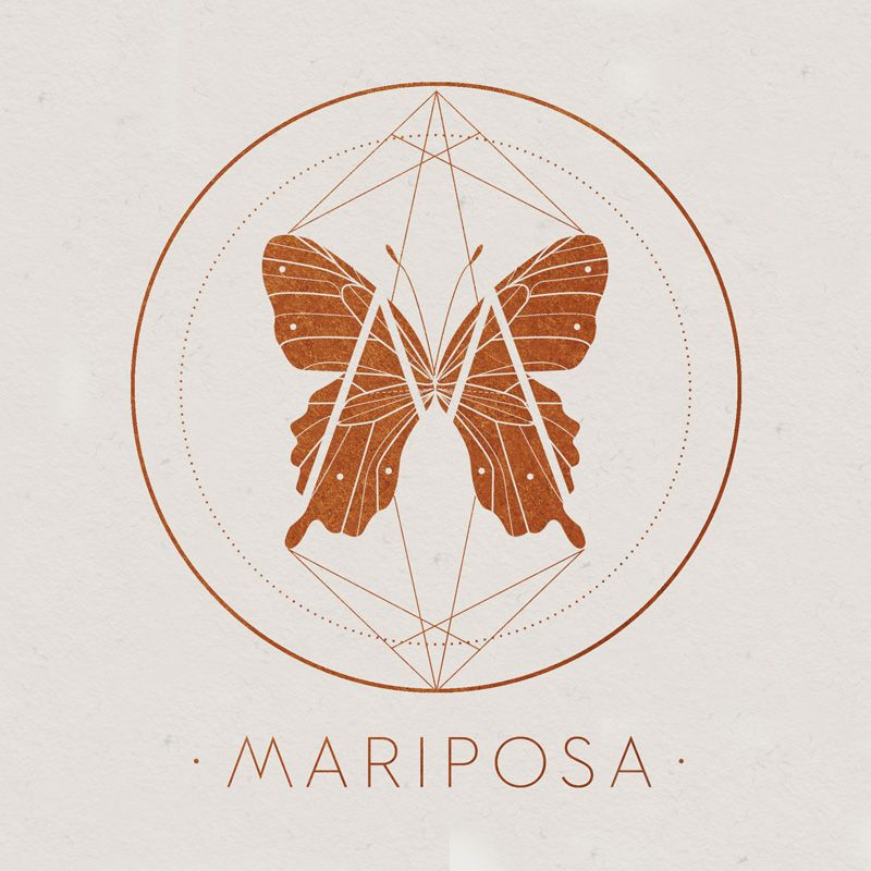 Mariposa Logo for Lou Madhu\'s Butterfly Taxidermy | LOGO // BRANDING ...
