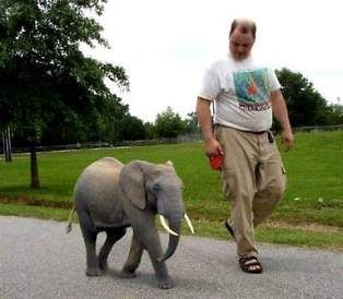 Takin' my human out for a walk....