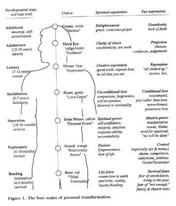 conscious evolution levels - Pesquisa Google