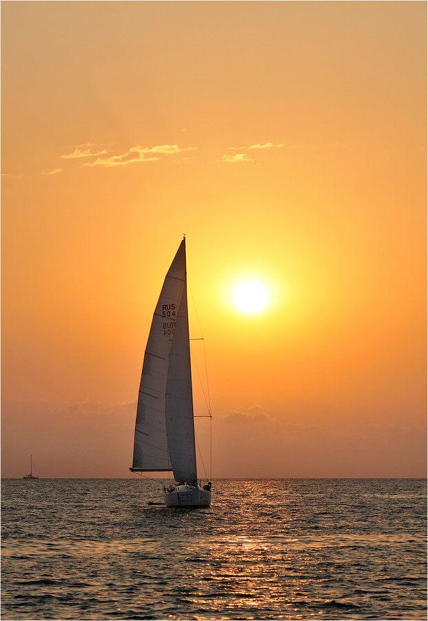 Sail Boat / Sailing