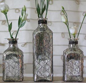 preview_mercury_silver_bottle