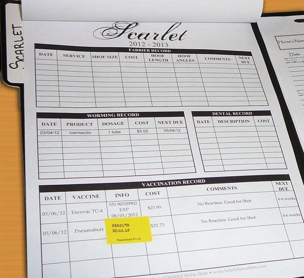 Horse Health Record Form FREE Printable Horse health