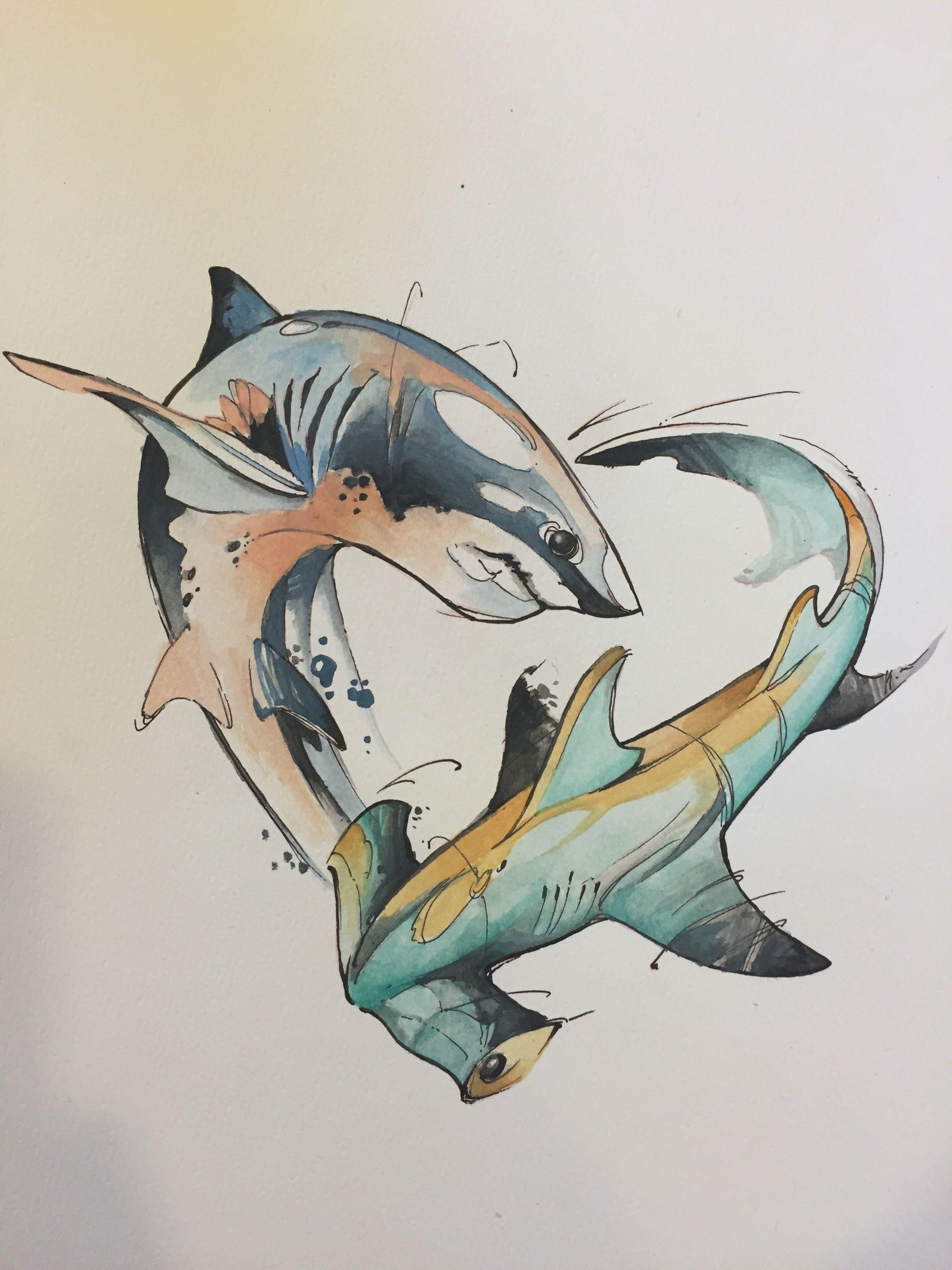 Watercolor Shark And Hammerhead Shark Art Animal Drawings