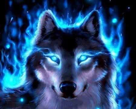 Blue Glowing Blue Eyes Wolf Wallpaper