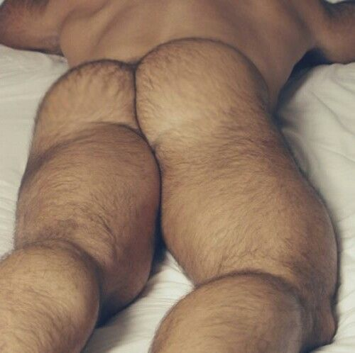 Gay hairy bum