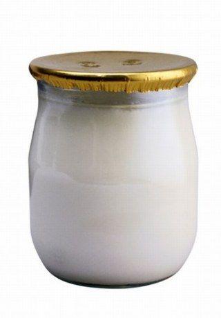 naturjoghurt bei diät