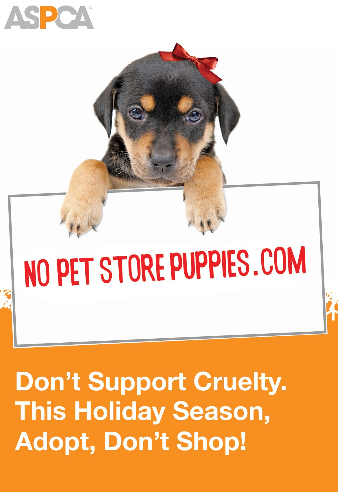 Family Pets The Ultimate Immune System Boosters For Children Puppy Mills Pet Store Puppies Puppies