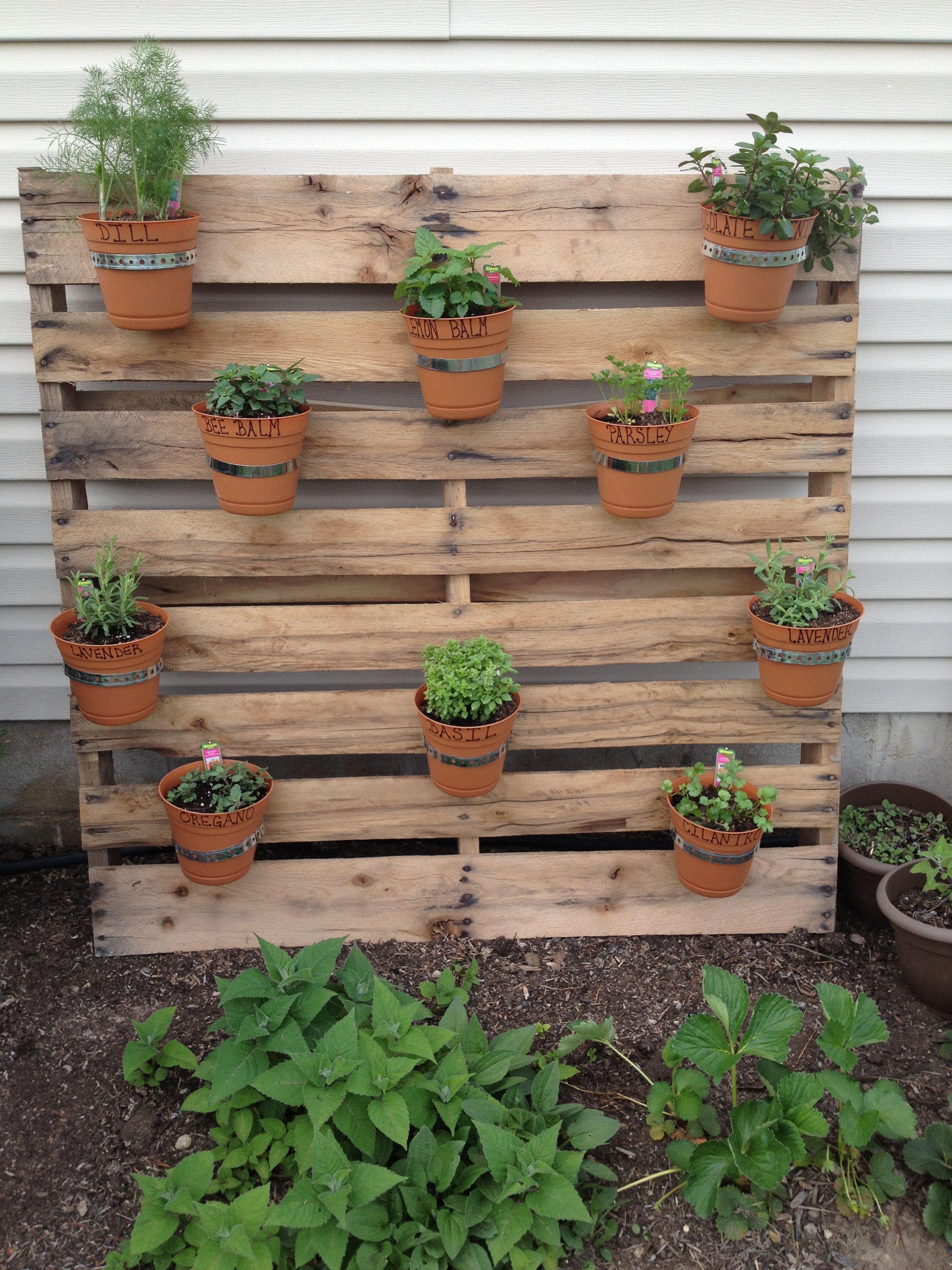 pallet herb garden my dream garden pinterest pallet. Black Bedroom Furniture Sets. Home Design Ideas