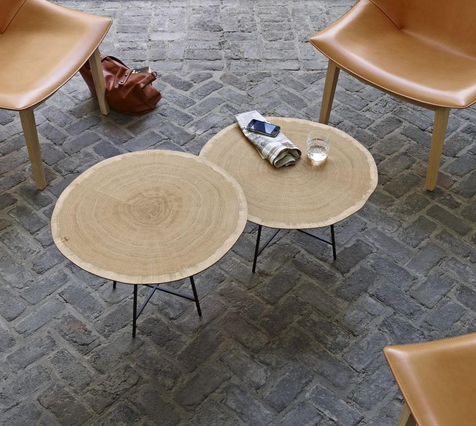 Pin By Suzi Q On Organic Modern Ligne Roset Table Low Tables