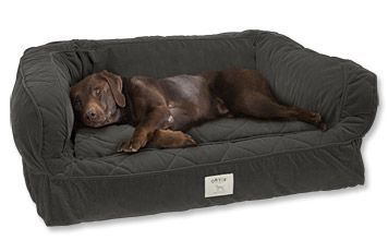 Dog Bed With Bolster Lounger Deep Dish Dog Bed Orvis Dog