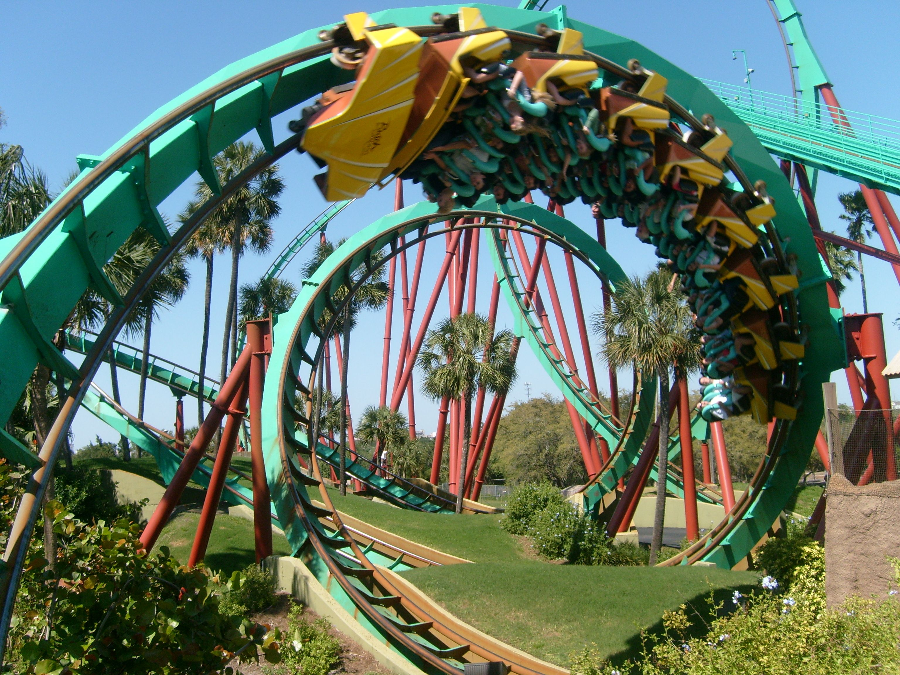 Things To Do Near Busch Gardens Tampa Fl