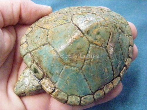 Green turtle rattle, Becky Dennis
