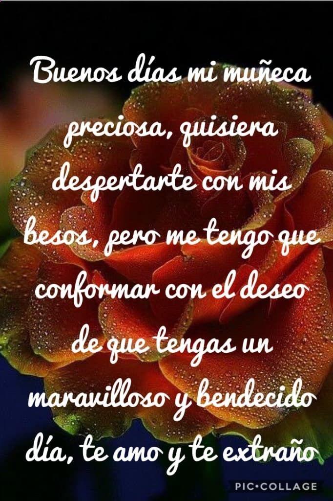 Poemas De Buenos Dias Mi Amor Te Amo Memes Graciosos En Espanol 2016 La App De Brayan Go Bendecido