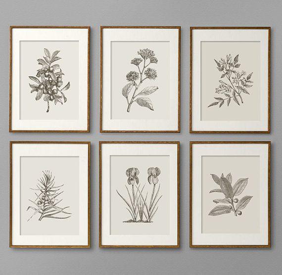 Botanical Art Wall