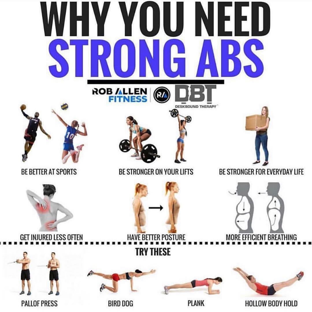 So Everyone Says That Strong Abs Or A Strong Core Is Important There S No Denying That This Is True But Why Exac Abs Workout Ab Workout With Weights Workout