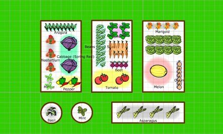 Bring Garden Planning Into Your Garden With Images Mother
