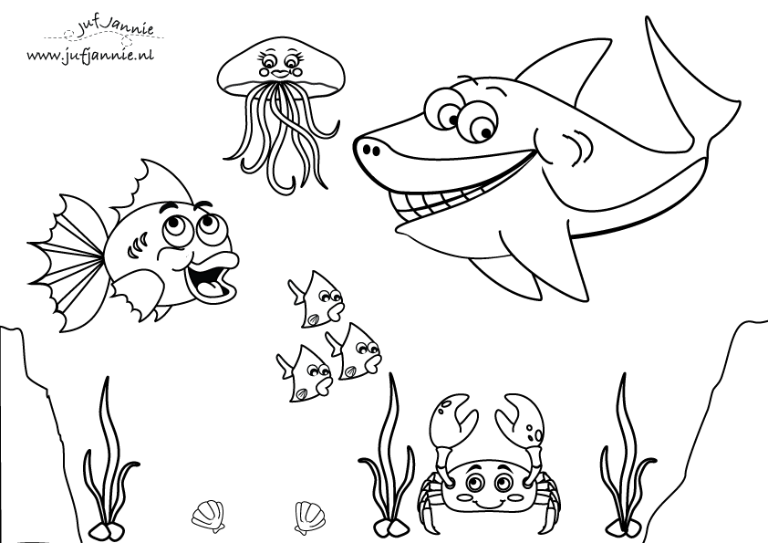 kleurplaat zeedieren kleurplaten schets zeedieren