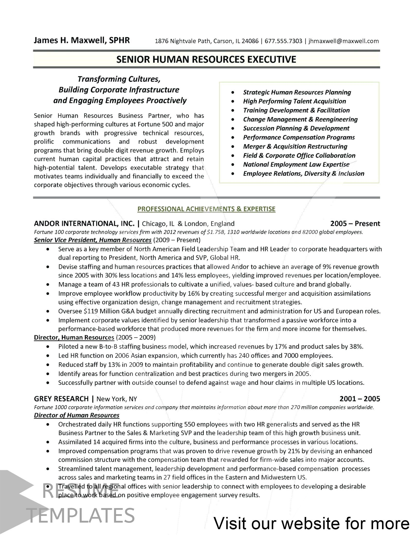 management resume examples in 2020 Executive resume