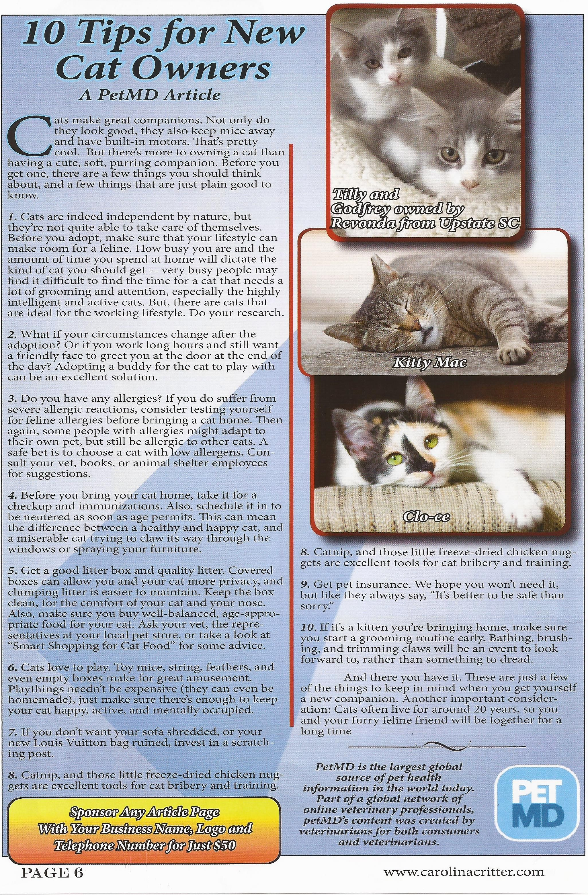Page 6 With Images Cat Owners Tillys Purring