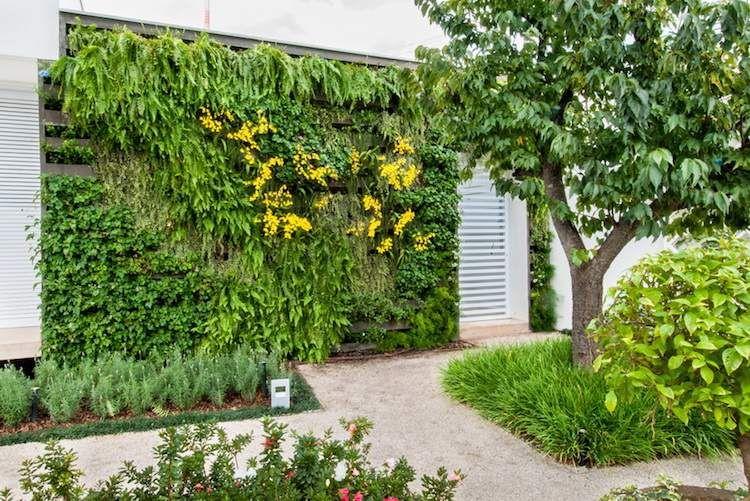 Construire mur végétal extérieur \u2013 conseils sur les types et leur
