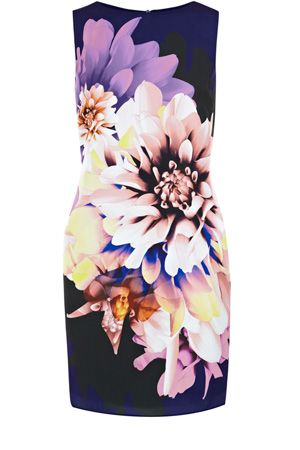 a1ba41f972c3 This sleeveless dress has an all over photographic floral print to the body  and simply zips up the back. Finishing mid thigh, this piece is a great  standout ...