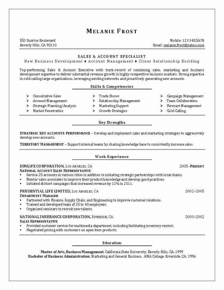 Sales Resume Examples Pdf