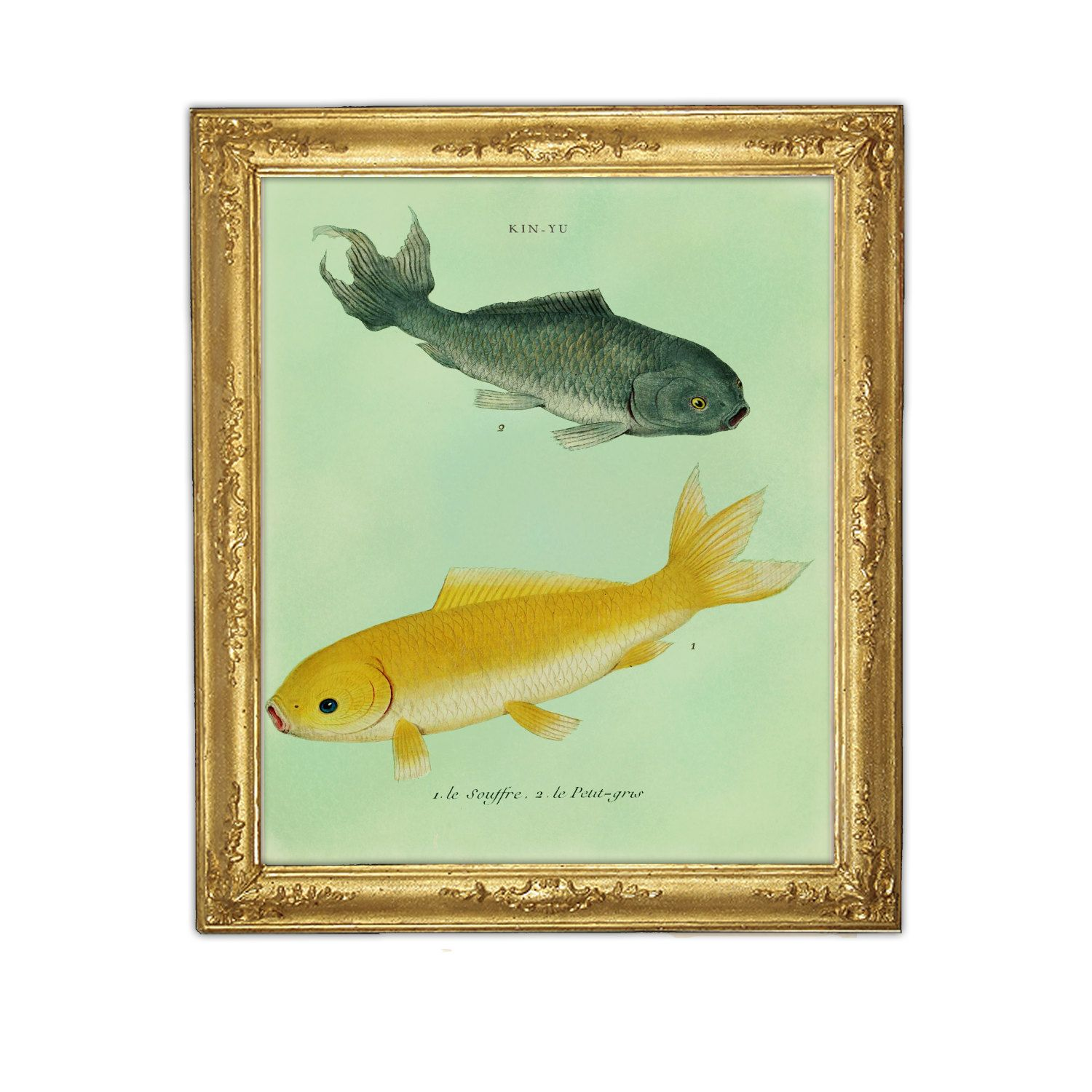 Goldfish Art Print Goldfish Poster Black and Yellow Fish ...