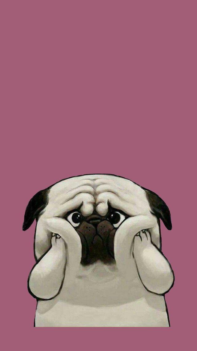 Funny Wallpaper Iphone Animals Cute Dog Wallpaper Pug