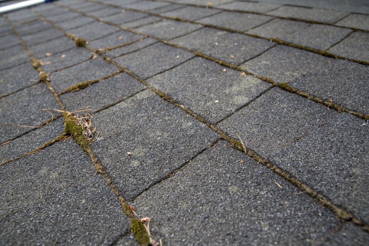 How to Treat and Remove Moss From Your Roof Composite