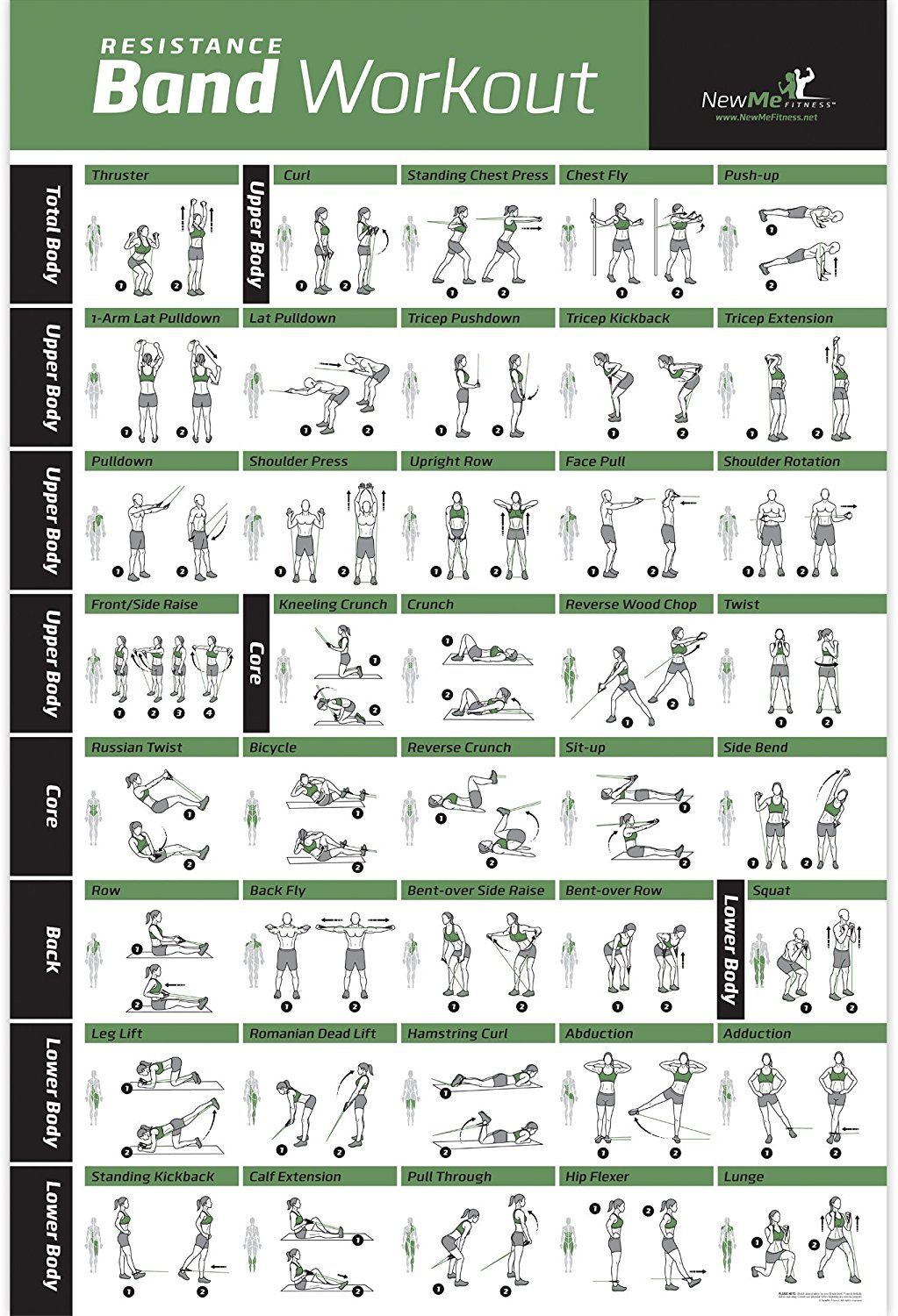 Resistance Band//Tube Exercise Poster Laminated Total Body Workout Personal ...