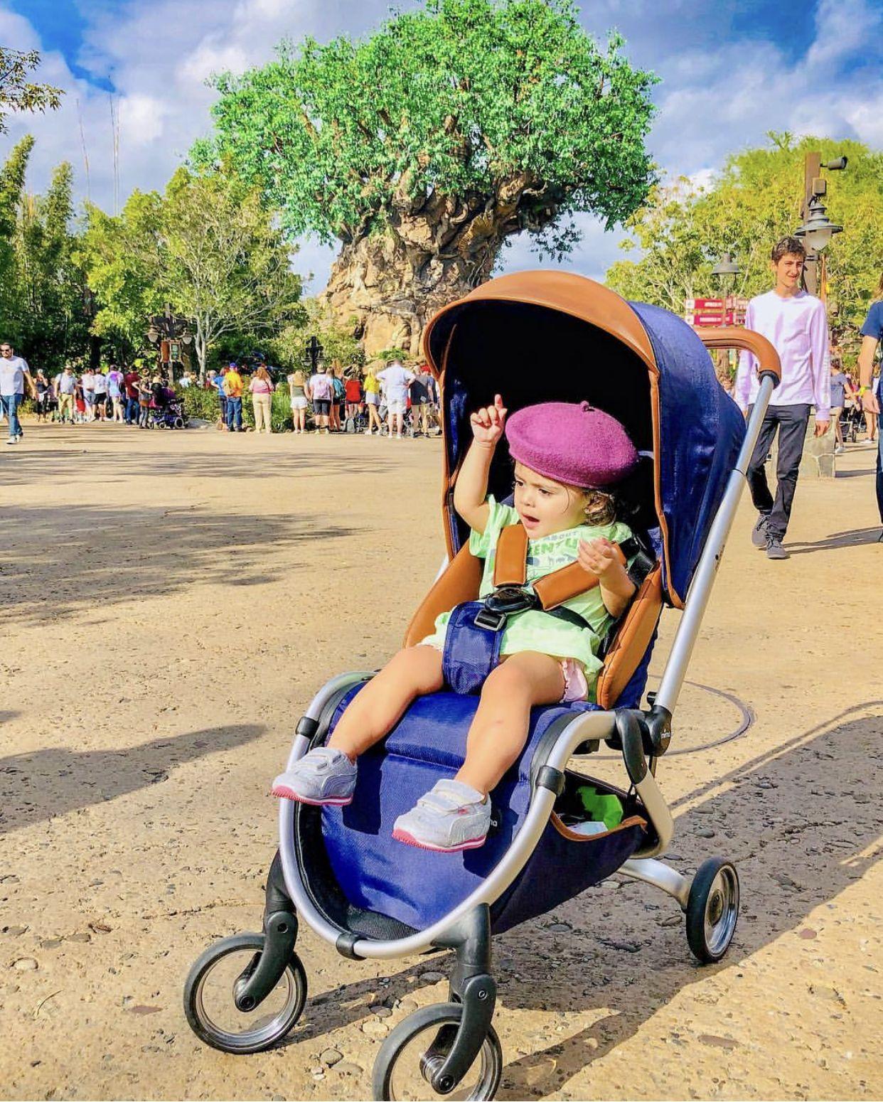 Mima Zigi Travel stroller, Animal kingdom disney, Stroller
