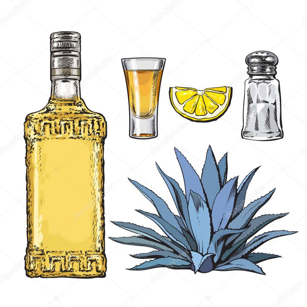 Set De Botella De Tequila Chupito Molino De Sal Agave Y Lima Ilustracion De Stock Botellas De Tequila Dibujos De Botellas Tequila