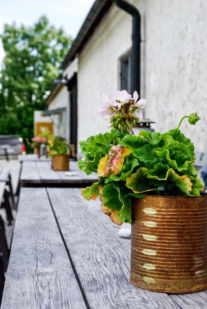 leva kungslador, sweden, gotland, scandinavian interior, summer, sommar, restaurant