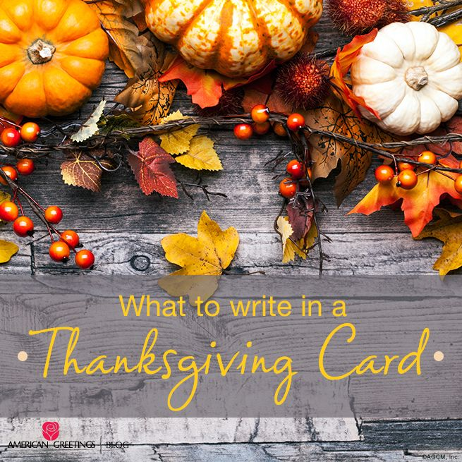 it can be hard to find the words to express what so often goes unspoken if you need a little help on what to write in a thanksgiving card read on