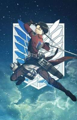 Levi Ackerman Wallpapers In 2020 Attack On Titan Levi Levi Ackerman Attack On Titan Shirt