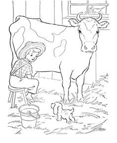 Milking A Cow Farm Animal Coloring Pages