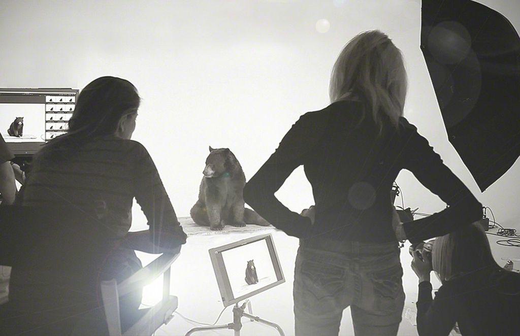 Photographer Sharon Montrose of The Animal Print Shop