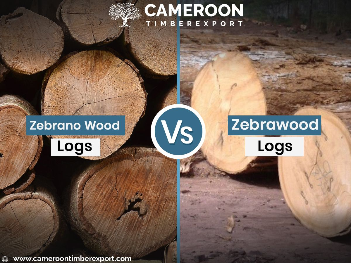 Trusted Zebrano Wood Suppliers Exporters Wholesaler In Asia Gcc Europe Wood Zebra Wood Wood Logs
