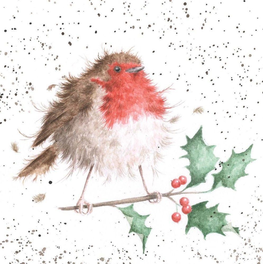 Christmas robin christmas cards from national trust robin christmas robin christmas cards from national trust kristyandbryce Gallery